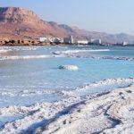 מי אחראי לטיפול בבולעני ים המלח?