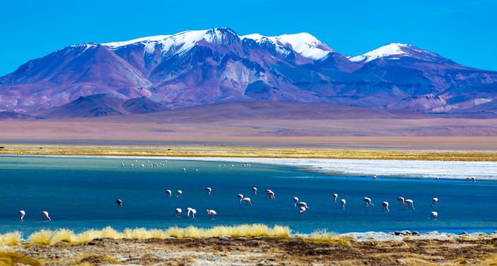 מדבר אטקמה בצ'ילה, בגובה 2400 מטר. צילום Depositphotos