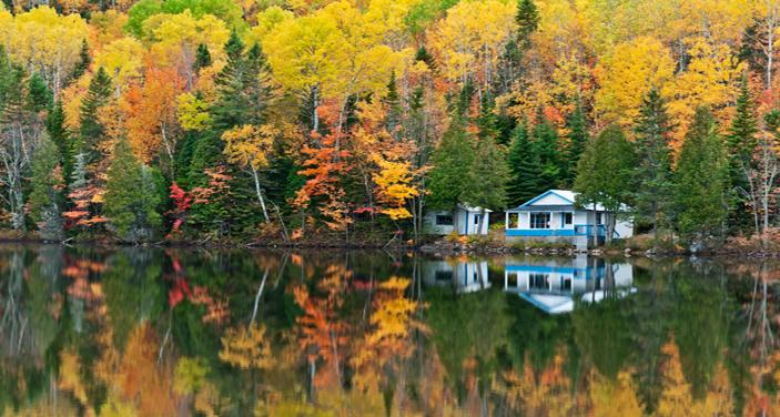 אי פרטי בקולומביה הבריטית שבקנדה. הוטלס קומביינד מציע אחוזות באזור במחיר ממוצע ללילה 470 דולר. צילום Depositphotos