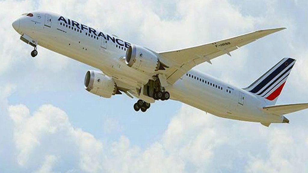 """מטוס אייר פראנס צילום יח""""צ"""