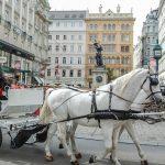 אופיר טורס מציעה: סיור שוקי חג המולד בוינה