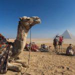גרמניה ו-UNWTO: מצרים היא מדינת התיירות הצומחת הגדולה באזור