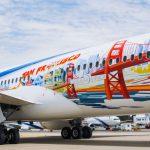 איורים מרהיבים על מטוס הדרימליינר חיפה של אל על