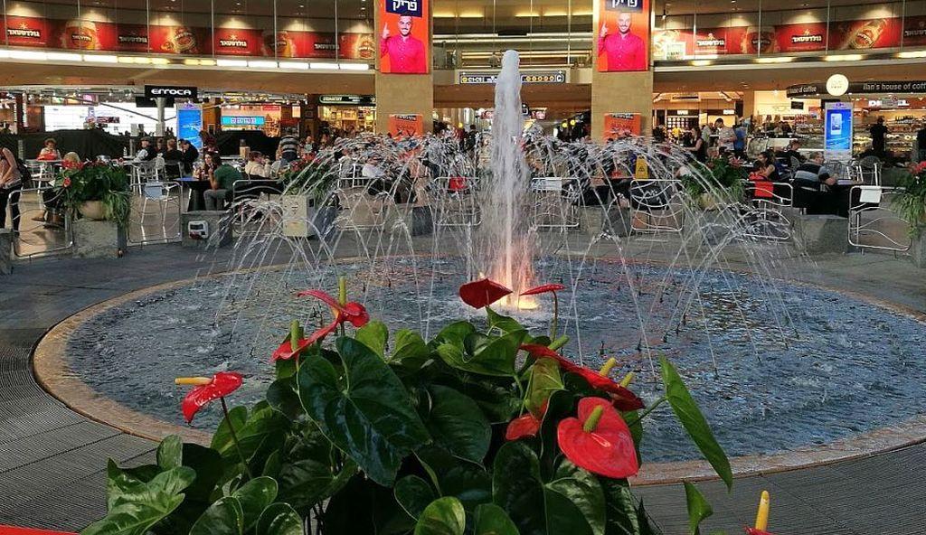 טרמינל 3: הנוסעים בחרו לטוס וויזאייר. צילום עירית רוזנבלום
