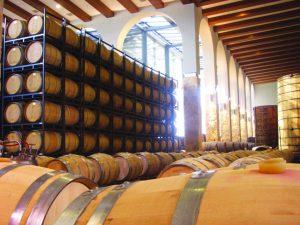 """חביות היין של כרם ברקן. צילום יח""""צ"""
