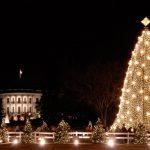 לקראת חג המולד: האטרקציה היפה מכולן