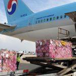 קוריאן אייר מסיימת את 2020 ברווח תפעולי של 213 מיליון דולר