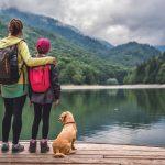 כיצד ניתן להבטיח התאוששות טובה יותר של ענף התיירות והנסיעות?