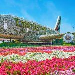 מטוס איירבוס A380 חונה בגן הפרחים הטבעי הגדול בעולם