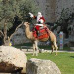 קישוטים ותאורת חג מרהיבה במקומות מרכזיים בעיר נצרת