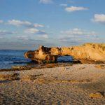 """'שבוע אדם וים': רט""""ג מחוייבת לפעילות לשמירת אוצרות הטבע בישראל"""