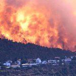 אסון השריפה בהרי יהודה: פגיעה ברכוש, בבעלי חיים, בצמחייה ובתיירות
