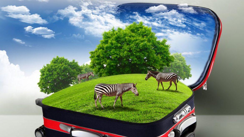 מענקים מבוקינג לסטארט-אפים של תיירות ירוקה מקרן של 2 מיליון יורו