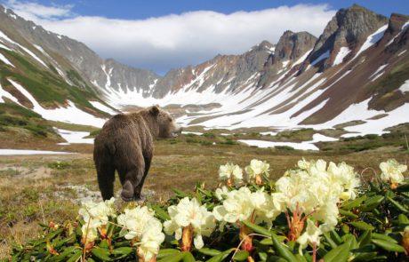 רוסיה מגלה יצירתיות בשיווק תיירות למדינה