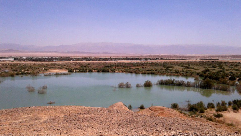 הערבה התיכונה – אתרים תיירותים מרתקים ונופים בראשיתיים