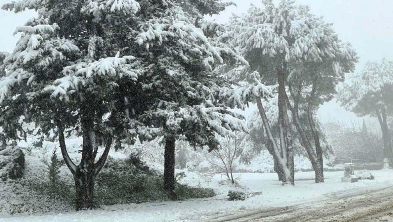 בחורף הזה תלבשו לבן
