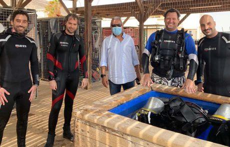 מבצע לשיקום שונית האלמוגים באילת