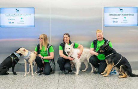 פתרון יעיל לגילוי קורונה: כלבים בשירות נמל התעופה פינביה הלסינקי