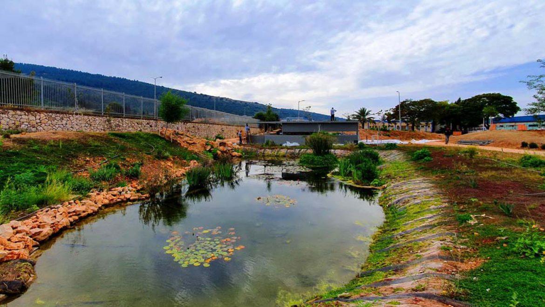 """""""פרפרים הם חופשיים"""": פארק הפרפרים הראשון בישראל, בבקעת כרמיאל"""