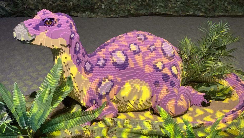 """""""ממלכת הדינוזאורים"""" כובשת את אילת"""
