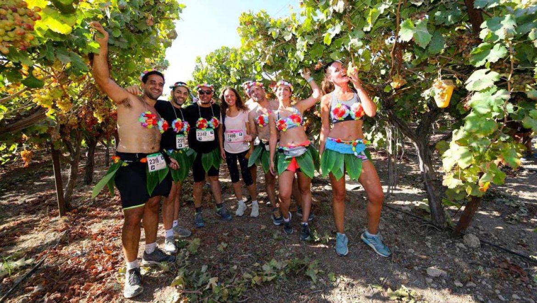 נכנס יין, יצא חצי מרתון הבוז'ולה ישראל במועצה האזורית גזר