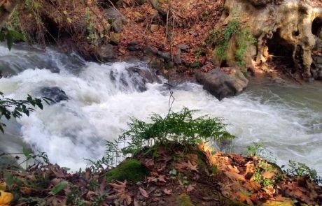 שבעה כללים חשובים לטיול מוצלח בטבע